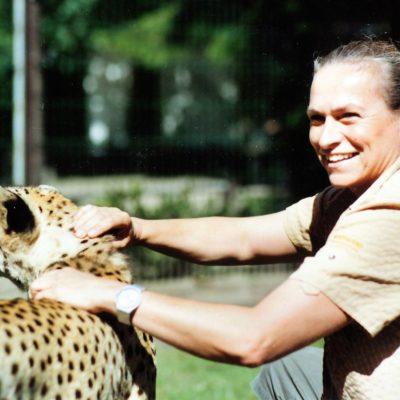 Wini Abresch behandelt Gepard